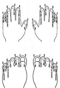 井穴刺絡療法の説明画像