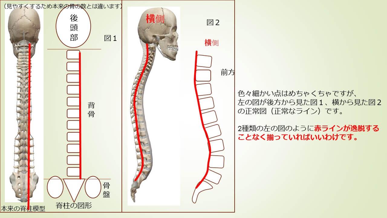 姿勢の説明2